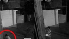 9 giờ tối có người gõ cửa, chủ nhà sợ không dám mở, check camera mới 'ngớ người' vì cảnh tượng bất ngờ