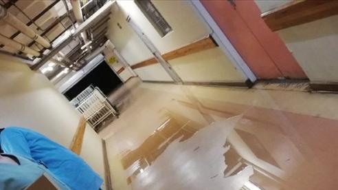 Nỗi kinh hoàng bên trong bệnh viện Nam Phi giữa đại dịch COVID-19