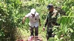Điều tra nhóm đối tượng giết bò tót trong Vườn quốc gia Cát Tiên