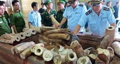 Chống buôn lậu qua cảng Đà Nẵng