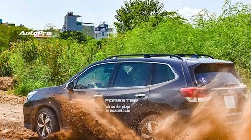 Subaru lần đầu mang trải nghiệm 'phá' Forester tới khách hàng Hà Nội