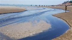 Nghệ An: Người dân bức xúc vì nước thải hồ tôm gây hôi thối