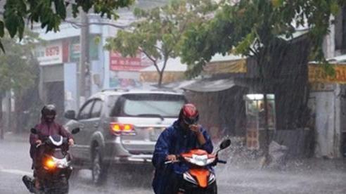 Hà Nội và các tỉnh miền Bắc chuẩn bị đón cơn mưa vàng giải nhiệt, kết thúc đợt nắng nóng