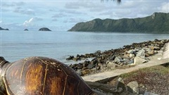 Đây là vùng ngắm rùa biển đẹp nhất ở Việt Nam được báo chí nước ngoài khen ngợi không ngớt, khung cảnh mãn nhãn khiến ai nấy háo hức muốn xách vali lên và đi