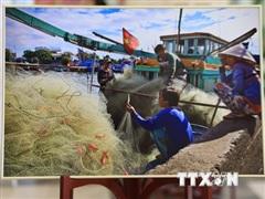 Hình ảnh biển đảo Việt Nam gây ấn tượng với người dân Nga