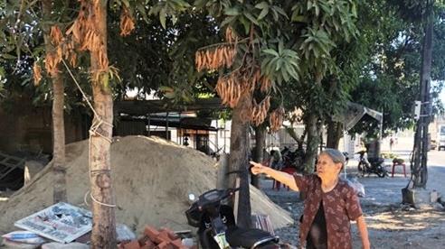 Cụ bà hơn 90 tuổi tố UBND huyện giữ trái phép nhiều GCN QSDĐ của gia đình