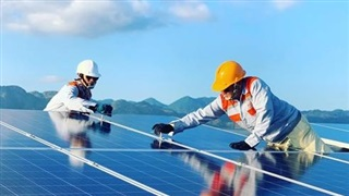 Nhà đầu tư năng lượng tái tạo hoan nghênh hành động kịp thời của EVN