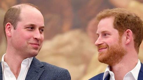 William và Harry đã rạn nứt từ trước khi Meghan xuất hiện?
