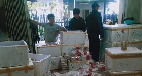 Bắt 370kg dâu tây Trung Quốc sắp ra chợ Đà Lạt