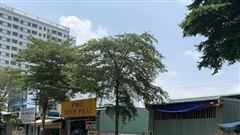 Phát hiện 51 căn nhà tiền chế, nhà tạm xây 'lụi' ở vùng ven TP.HCM
