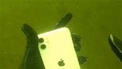 YouTuber mò mẫm đáy sông vớ được iPhone 11, mỗi tội dính 'quả lừa' không biết chủ nhân thật hay giả