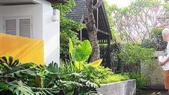 Khu vườn nhiệt đới được cải tạo theo phong cách hiện đại của người đàn ông đã nghỉ hưu