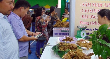 Quảng Nam dừng, hoãn nhiều hoạt động do dịch COVID-19