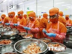 Thương vụ Việt Nam tại Singapore đổi mới công tác hỗ trợ doanh nghiệp