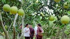 Phát huy hiệu quả nguồn quỹ khuyến nông