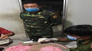 Long An: Bắt 2 đối tượng tàng trữ hơn 10kg ma túy ở biên giới