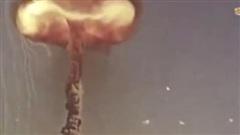 Chương trình hạt nhân gây tranh cãi của Mỹ sẽ mở ra viễn cảnh đen tối?