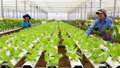 Nông nghiệp Hà Nội đặt mục tiêu tăng trưởng 4,12% trở lên