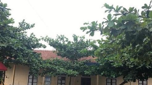 Quảng Bình: Nhà thầu ròng rã đòi nợ suốt 15 năm, 3 đời chủ tịch xã chưa hẹn ngày trả