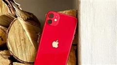 Cả thị trường smartphone sụt giảm, chỉ duy nhất doanh số iPhone tăng vọt tới 25% giữa đại dịch
