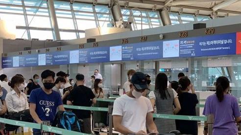 Covid-19: Hơn 230 công dân Việt Nam từ Hàn Quốc trở về nước an toàn