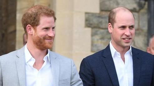 Rạn nứt giữa Harry và William bắt nguồn từ lòng ghen tỵ