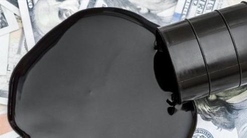 Thua lỗ bủa vây các đại gia dầu mỏ Mỹ và Italy