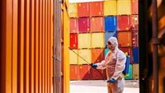 Các chuyên gia nói gì về kịch bản kinh tế toàn cầu năm 2021?