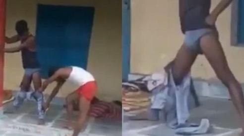Ấn Độ: Bị rắn hổ mang chui vào quần, nạn nhân thoát chết nhờ đứng bất động 7 giờ liền