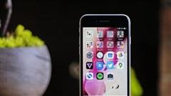 Nhờ iPhone SE 2020, Apple làm được điều 'kỳ diệu' trong quý II