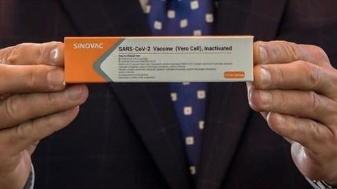 Vaccine COVID-19 thế giới mong chờ có thể đang nằm trong tĩnh mạch người Brazil