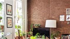 Căn hộ 25m² đẹp nổi bật với bức tường gạch trần hòa mình cùng thiên nhiên