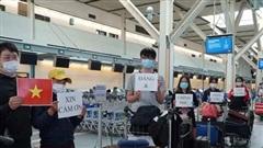 Đưa 300 công dân Việt Nam tại Canada và Hàn Quốc về nước