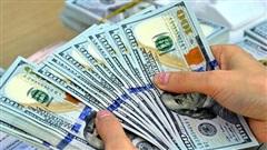 Tỷ giá ngoại tệ ngày 3/8: USD rớt thảm hại phiên đầu tuần