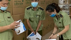 Tạm giữ 200 thùng khẩu trang y tế có dấu hiệu không đạt tiêu chuẩn chất lượng