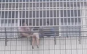 Khoảnh khắc giải cứu bé gái 5 tuổi bị treo lủng lẳng ở lưới chống trộm trên tầng 5