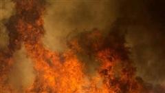 Cháy rừng kinh hoàng ở California tiếp tục lan rộng