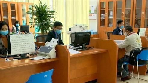 Đại diện Tổng cục Thuế: 'Doanh nghiệp không phát sinh doanh thu, họ không nộp giấy xin hoãn'
