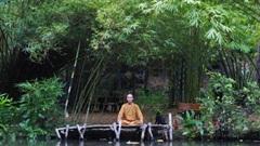 Tịnh tâm tại vườn tre trúc lớn nhất miền Trung