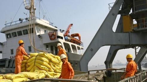 Giá dịch vụ cảng biển quá thấp, DN Việt Nam chịu nhiều thiệt thòi