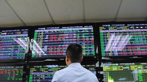 VDSC: 'Nhà đầu tư đã có kinh nghiệm đánh giá dịch bệnh, VN-Index khó có cơ hội trở lại đáy cũ trong giai đoạn cuối năm'