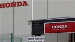 Hãng xe Honda: Lợi nhuận năm nay giảm do ảnh hưởng do dịch COVID-19
