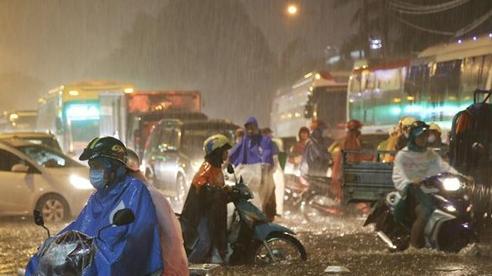 Kinh nghiệm 'sống còn' khi đi xe gặp trời mưa, đường ngập nước ai cũng cần biết