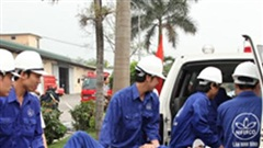 Hỗ trợ chuyển đổi nghề nghiệp cho người bị tai nạn lao động, bệnh nghề nghiệp