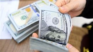 Tỷ giá ngoại tệ hôm nay (7/8): USD vẫn trên đà suy giảm