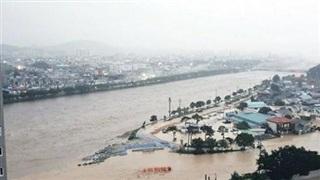 Mưa lớn gây lụt tại Hàn Quốc, hàng nghìn người phải đi sơ tán