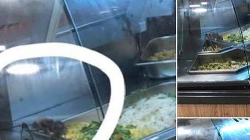 AEON Việt Nam xin lỗi vì để chuột bò vào tủ thức ăn