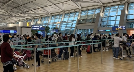 Đưa 313 công dân từ Hàn Quốc về nước an toàn