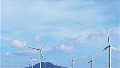 Ninh Thuận: Thêm 7 dự án điện mặt trời đưa vào vận hành