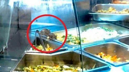 Aeon Mall phản hồi việc chuột bò trên khay thức ăn tại quầy thực phẩm